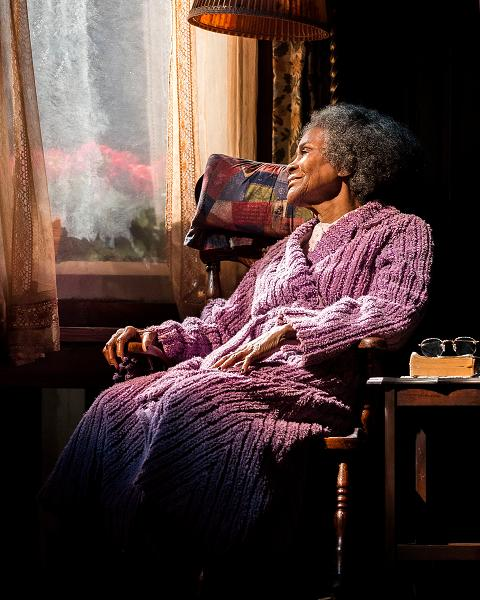 "Cicely Tyson in the critically acclaimed, Tony-nominated Broadway revival of Horton Foote's American masterpiece ""The Trip to Bountiful"" at the Center Theatre Group / Ahmanson Theatre. Directed by Michael Wilson, Photo by Craig Schwartz"
